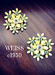 Weissearrings1
